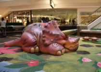 Cherry Creek Shopping Center featuring PLAYTIME play area featuring rhino