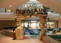 Cherry Creek Mall Dinosaur Theme Play Environment Created by Playtime