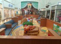 Arizona Mills Mall Play area desert animal and wildlife theme by PLAYTIME