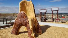 Outdoor Playtime park play area with front view of tree climbing structure and playground in background