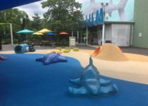 Outdoor play area at Adventure Aquarium