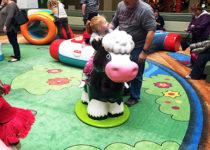 PLAYTIME Fisher Price barn animal play area