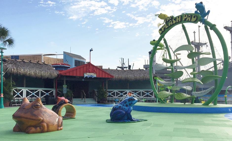 Florida Aquarium custom play area