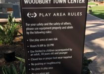 Woodbury Town Center Climbing Theme Environment Created by Playtime