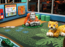 Monkey Mountain Jungle Theme Environment Created by Playtime