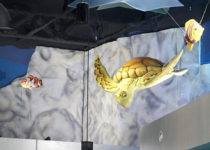 Pacific Pediatrics underwater themed play area created by Playtime